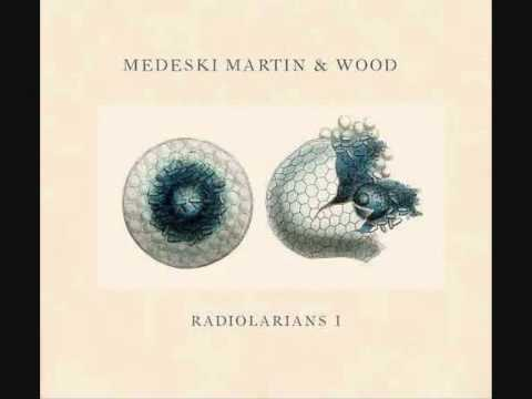 Medeski, Martin and Wood - First Light