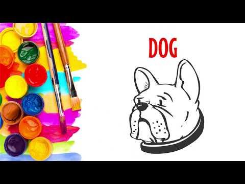 Как нарисовать собаку.  Урок рисования.