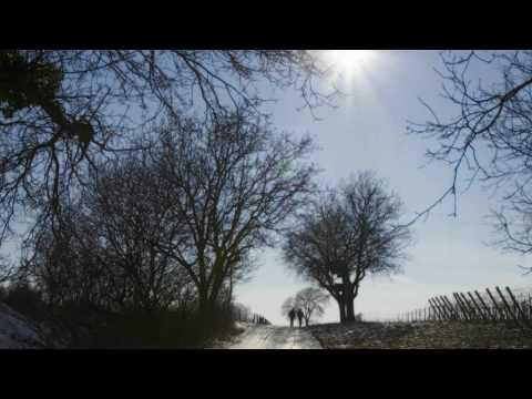 Ludwig van Beethoven - Violin Concerto D Major Opus 61 - (2) Larghetto