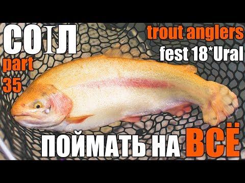 Поймать форель на всё! Trout Anglers Fest 18*Ural