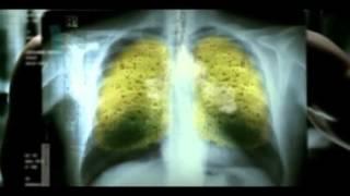 5) Научный фильм «Правда о табаке и как бросить курить»