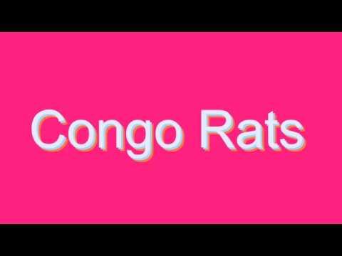 How to Pronounce Congo Rats