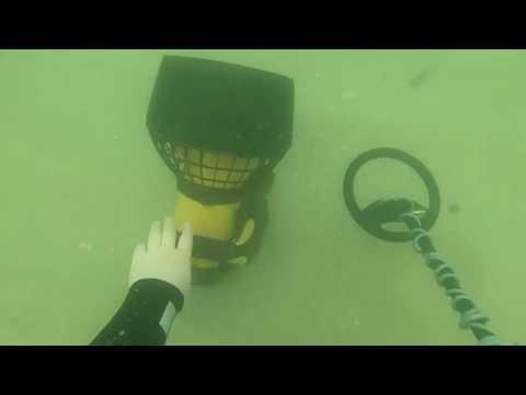 diver-attacked-underwater