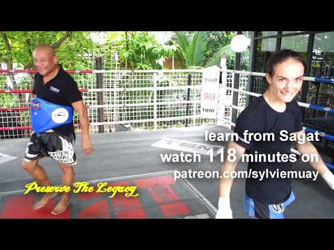 """Sagat """"Street Fighter"""" Showing Elbows 