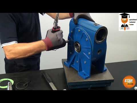 Download Worm Gearbox 3d Exploded View MP3, MKV, MP4 - Youtube to MP3