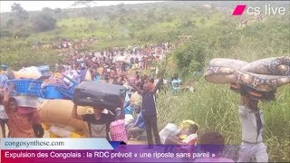 Expulsion des Congolais de l'Angola : la RDC prévoit « une riposte sans pareil »