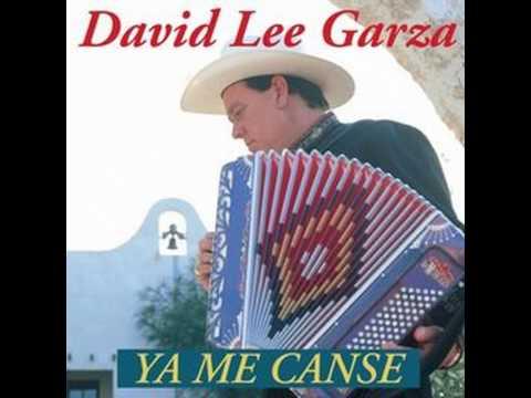 Amiga mía   David Lee Garza