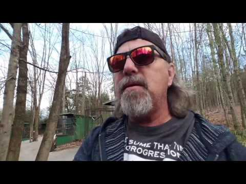 #glassgeekdailyvlog petting Bindi Irwin and Kaley Cuoco on the head at a Kentucky Roadside Attractio