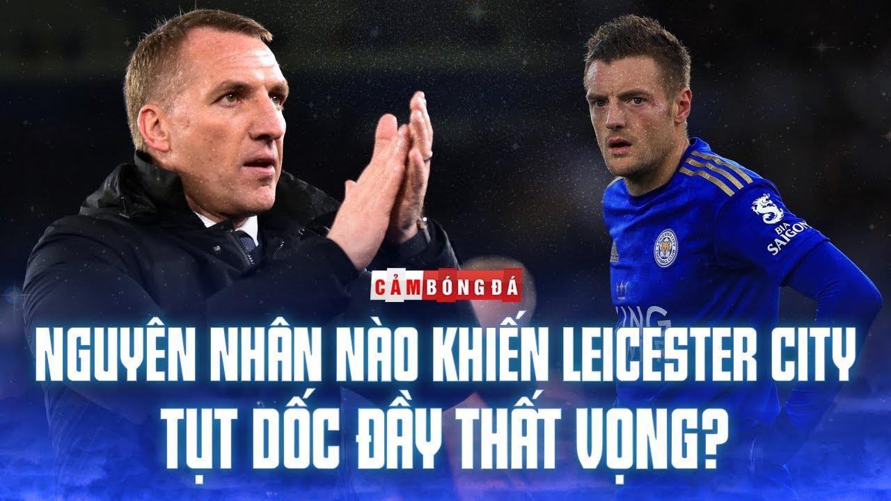 Nguyên nhân nào khiến Leicester City tụt dốc đầy thất vọng?