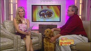 Golden Retriever Rescue Of Southwest Florida, Inc. 1-7-15