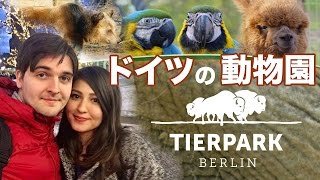 ベルリンの動物園ティエパーク /  Tierpark in Berlin!