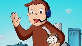 George O Curioso 🐵A Camera do Hamster 🐵Episódio Completo 🐵 Desenhos Animados