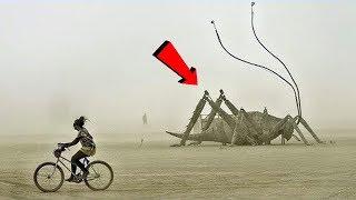 Download दुनिया के 5 सबसे बड़े कीड़े ( जिन्हें आप पहली बार देखोगे ) 5 Massive Insects That Are Actually Real Mp3 and Videos