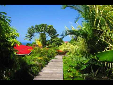 Residence De La Cousiniere - Vieux-Habitants - Guadeloupe