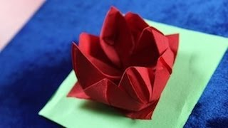Repeat youtube video Origami Napkin Flower Fiore Rose Ninfea