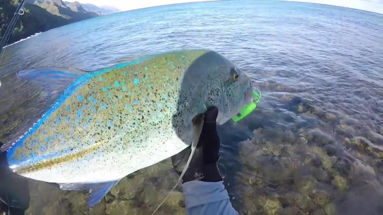 Plugging for omilu papio ulua kauai fishing youtube for Kauai fishing report
