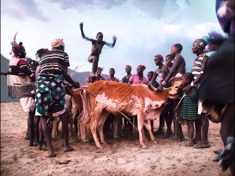 cow jumping rite of passage