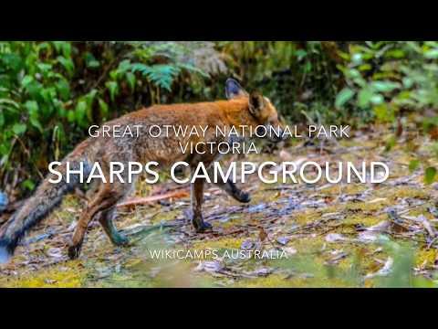Sharps Campground - Great Otway National Park, Victoria, Australia