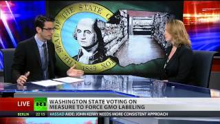 Washington state votes on GMO-labeling initiative