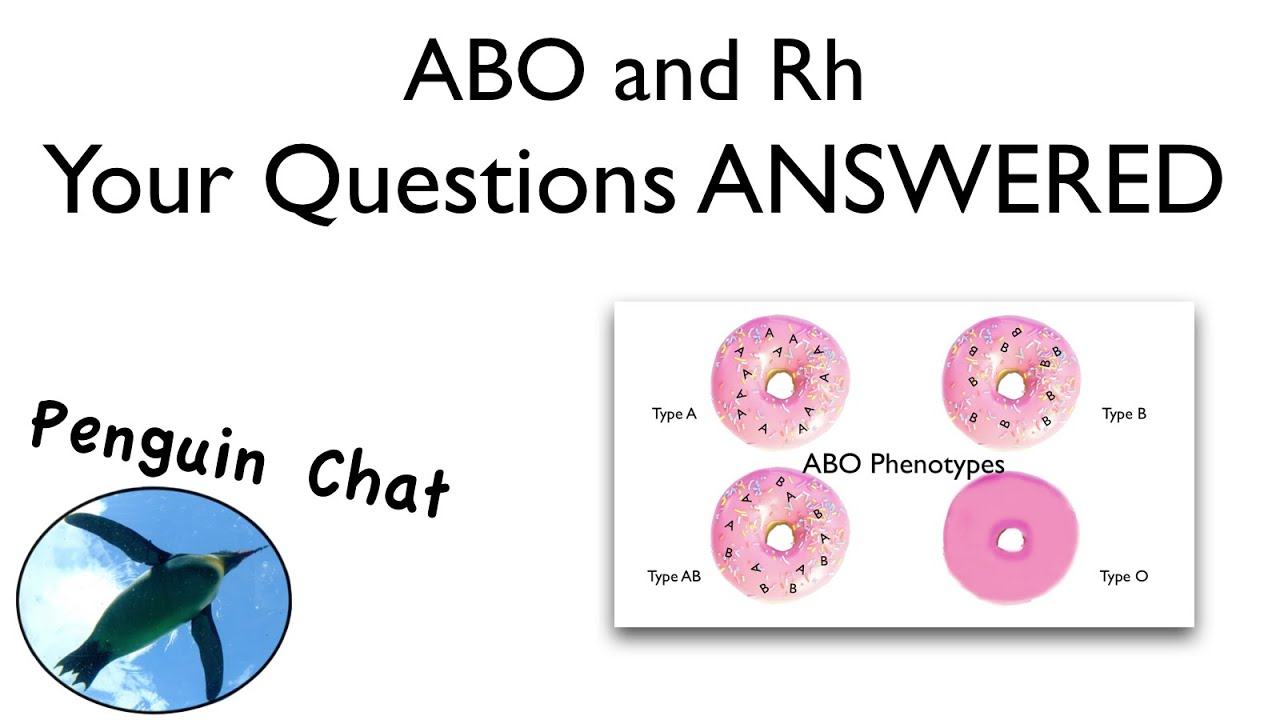 The Blood Type Diet FAQ: Frequently Asked Questions