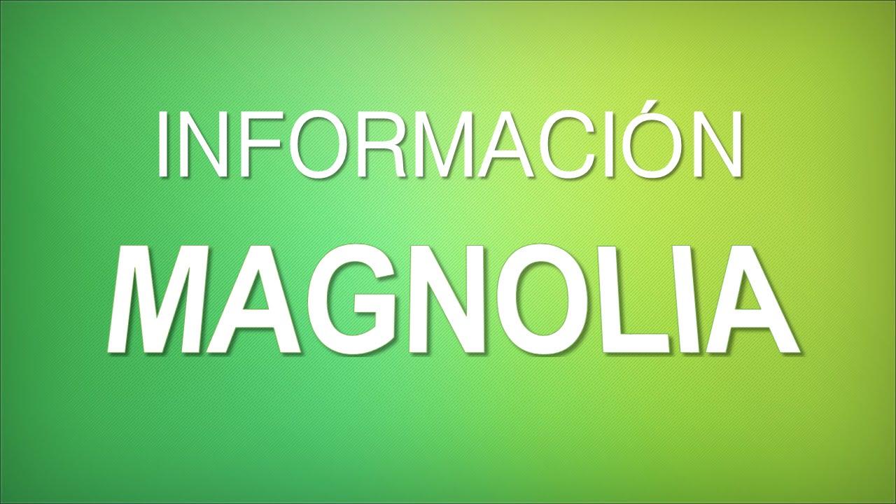 Informaci n magnolia soulangeana cuidados youtube - Magnolia planta cuidados ...
