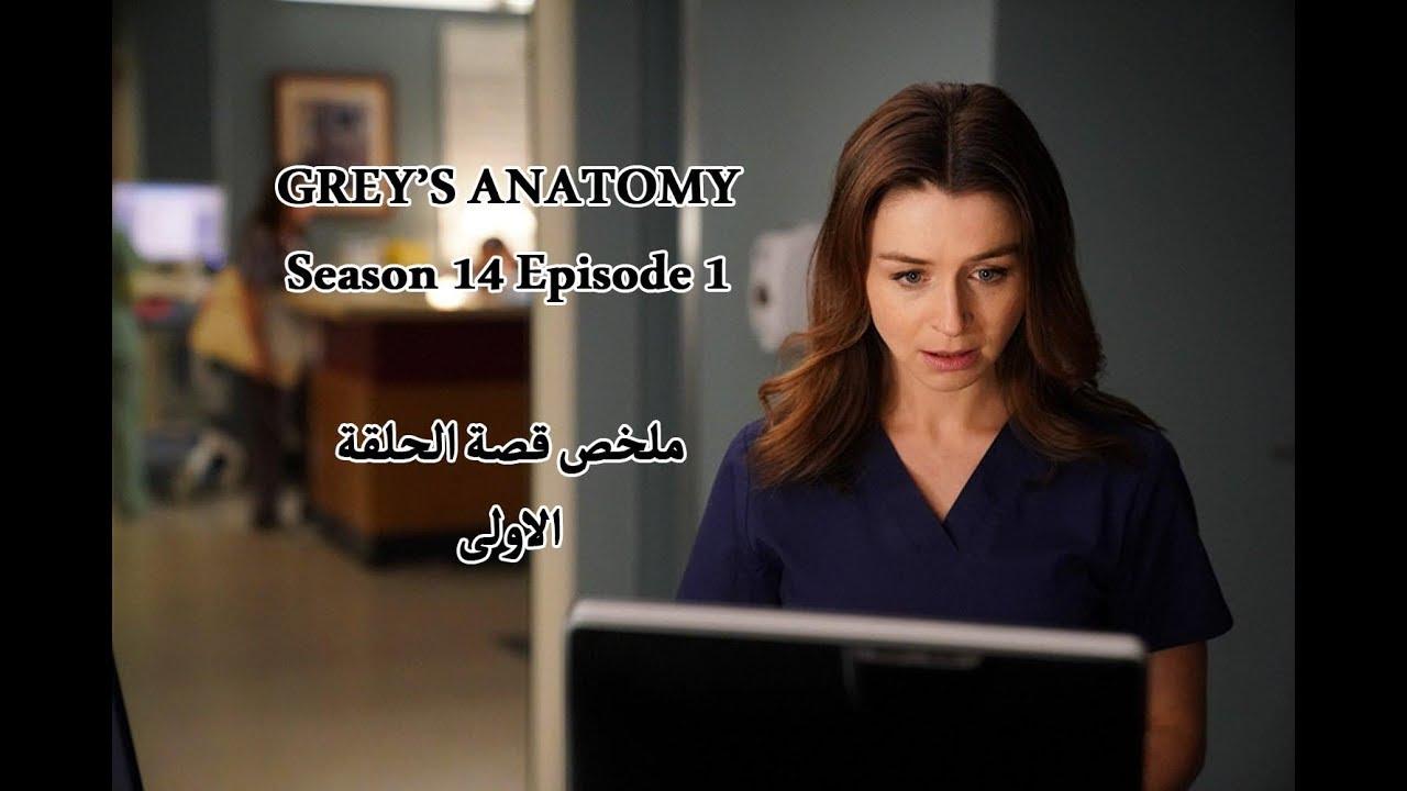 غريز أناتومي الموسم 14 الحلقة الاولى ملخص الحلقة الاولى Grey S
