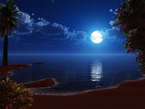 THE WAY YOU LOOK TONIGHT -Tony Bennett And Thalia