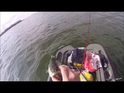 Bass Fishing Lake Bastrop / Bastrop Texas