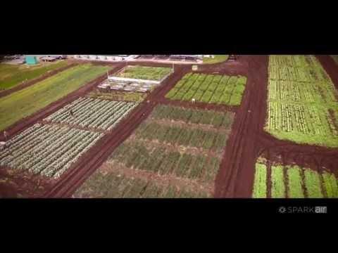 Drones for Safer Food