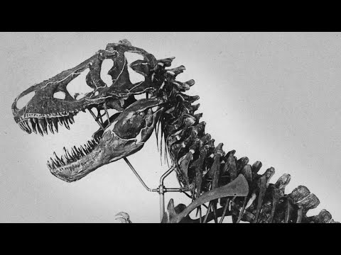 T. Rex: The King Of Time (and Pop Culture)