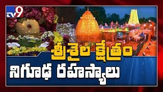 Srisailam Temple unknown facts - TV9 Exclusive coverage