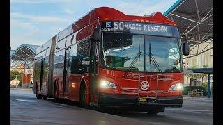 Lynx buses in Orlando