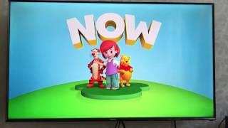 Video Disney Junior Asia My Friends Tiger & Pooh - Indonesia download MP3, 3GP, MP4, WEBM, AVI, FLV September 2018