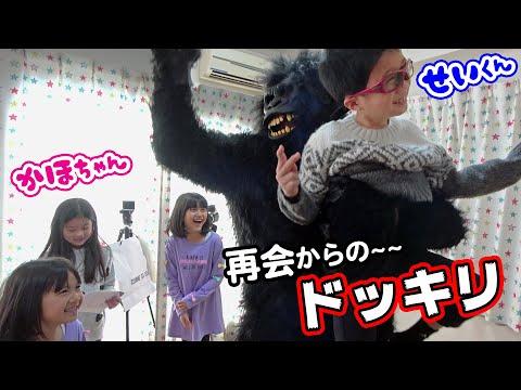 1年半ぶりの再会コラボ!かほせいちゃんにドッキリをしちゃおう!!himawari-CH