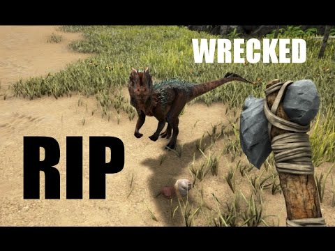 RIP in peace [Ark: Survival Evolved]