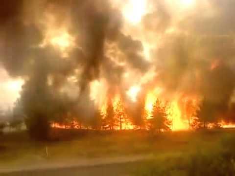 фото пожар в лесу пожар