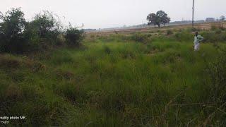 Manish chaudhary sant Kabir Nagar Video