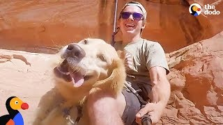 Adventure Puppy Helps Rescuer Heal After Losing His Best Friend | The Dodo