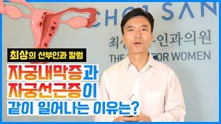 [최상 칼럼] 자궁내막증 자궁선근증 같이 일어나는 이유…