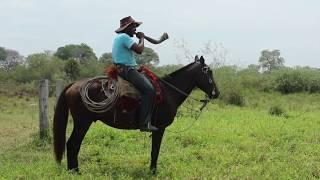 Chevauchée dans une fazenda au Brésil
