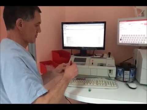 Analyse vétérinaire hématologie et biochimie