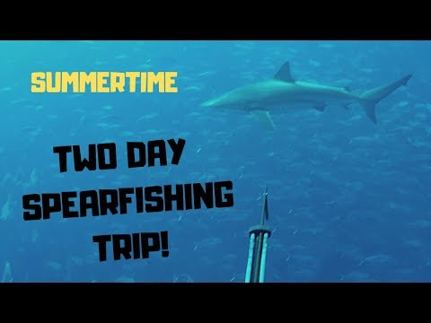 Spearfishing And Camping In Remote Far North, New Zealand...