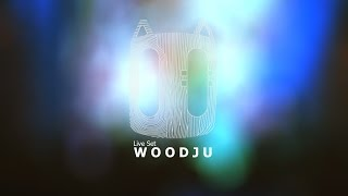 WOODJU live-set @ Abstrasension festival, Saint-Petersburg 23/05/15