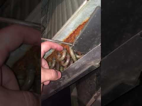 Cleaning evaporator coil