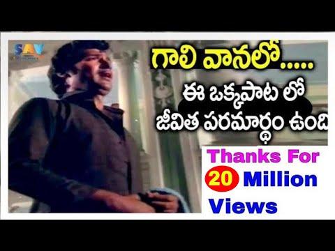 gali-vanalo-video-song-||-swayamvaram-movie-||-shoban-babu-|-jayapradha-||-sav-entertainment
