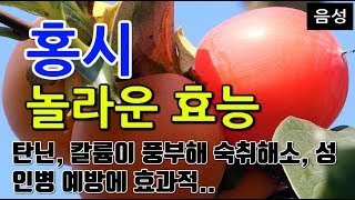 [#홍시효과] 홍시의 …