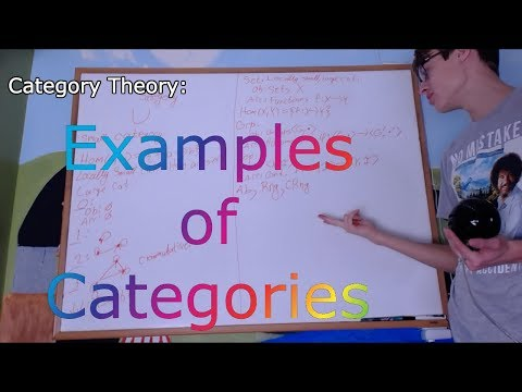 Category Theory 1.2 : Examples of Categories and Clarification