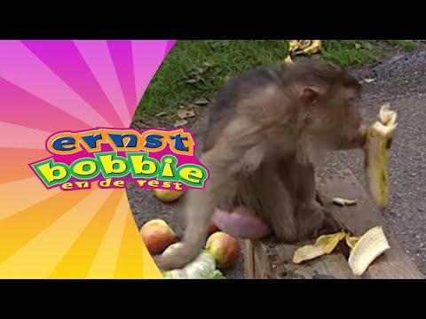 Lolo de Aap • Avonturen Bij het Circus • Ernst en Bobbie