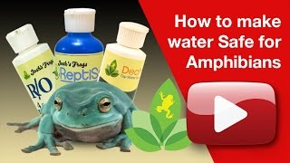 How to make water Safe for Amphibians
