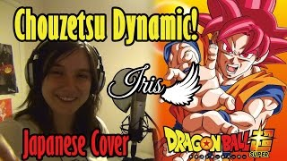 Cover images Chouzetsu☆Dynamic! 「超絶☆ダイナミック!」(Full Japanese Cover) - Iris